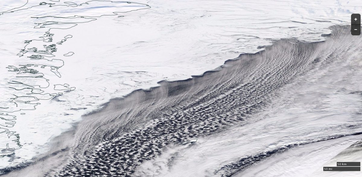 Ice Edge North of Greenland