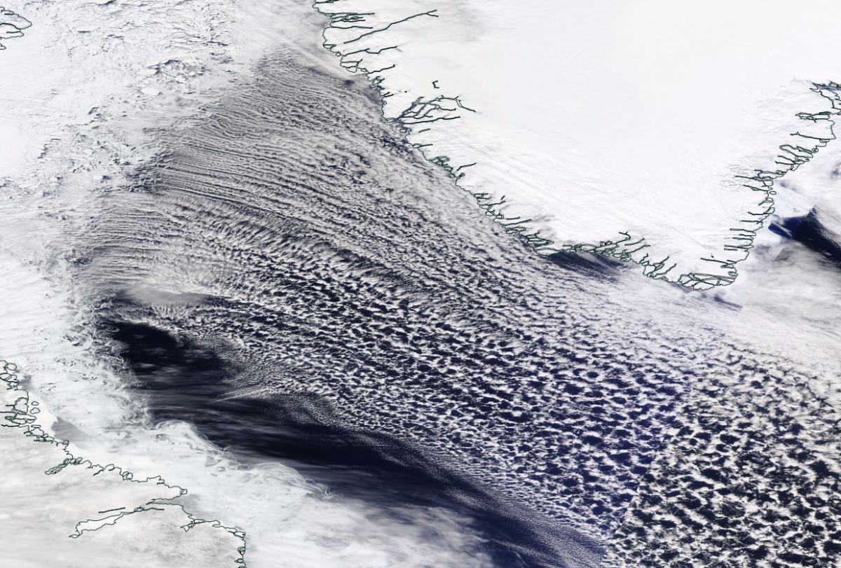 Open Cell Convection in the Davis Straits and Labrador Sea